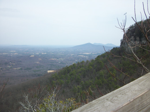 View from the Little Pinnacle Overlook