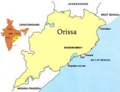 2014 Loksabha Election in Odisha