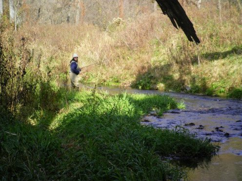 Fly fishing off the bank of an Iowa Farm land and in the trout stream.