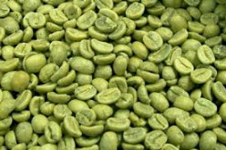 Pure Green Coffee Bean Extract is a Miracle Body Fat Burner