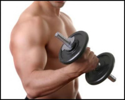 Eccentric Muscle Contraction