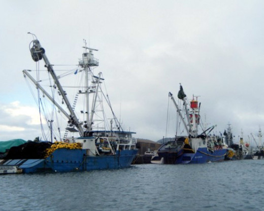 Chinese Tuna Fleet at Pohnpei, FSM