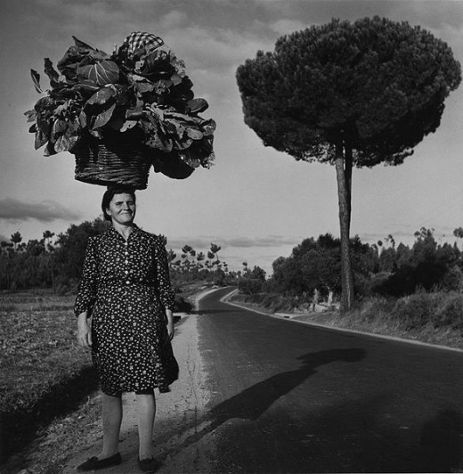 peasant woman carries her truck-garden produce on her head - and the load looks as big as a small tree.  United States Agency for International Development