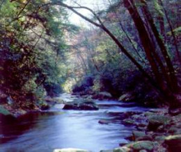 Upper Chattahoochee River