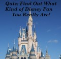 Fun Quiz: What Kind of Disney Person Are You?