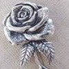 Silver Rose profile image