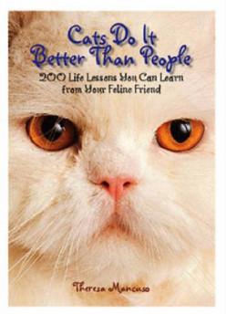 Cats Do it Better.