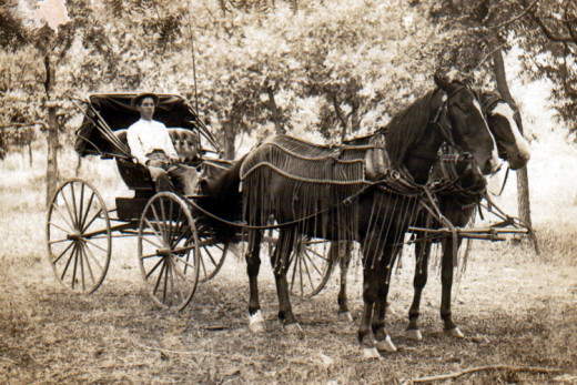 Image of a horse-drawn carriage like the Weston family may have built.