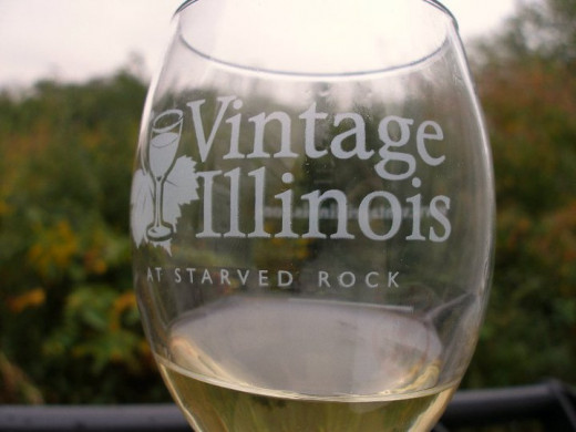 Wine Tasting at Vintage Illinois Wine Fest, Utica, IL