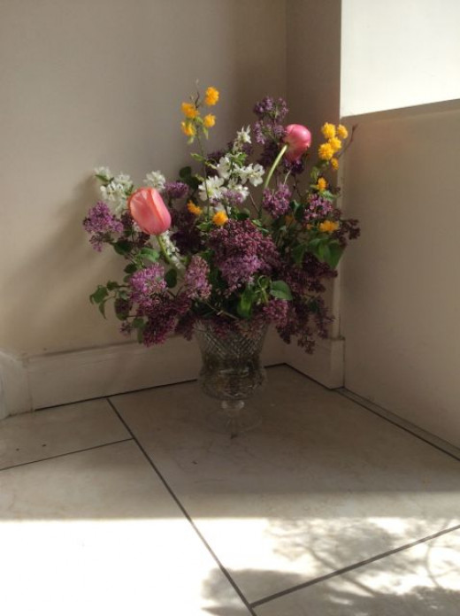 Erysimum, Kerria, Lilac, Macrantha 'The Bride' and Tulips in a cottage garden floral display.