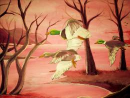 Where are the wild birds?