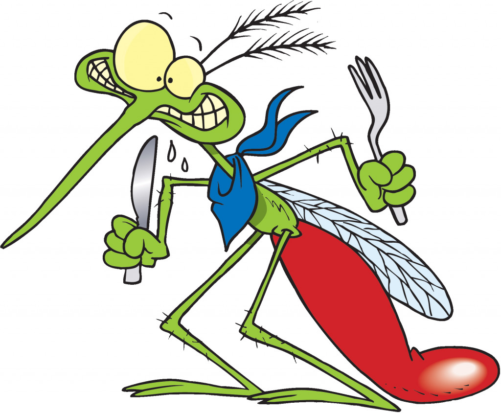 how to get rid of mosquitoes hubpages