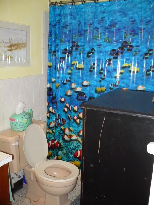 A different shower curtain is a cheap makeover for your bathroom.