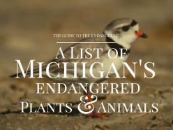 Endangered Species in Michigan
