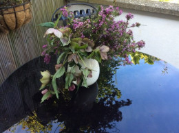 Heather and hellebores