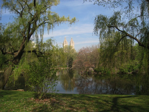 A Beltane festival in Central Park is where my dear friend and I first met in personl.