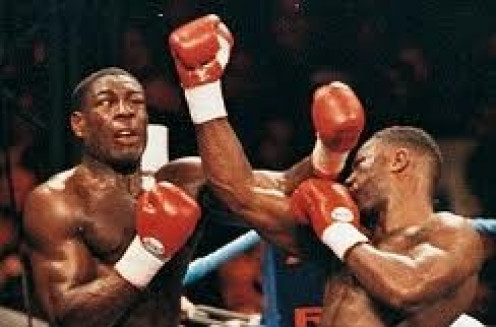 Lennox Lewis had Frank Bruno helpless along the ropes when their bout was stopped.
