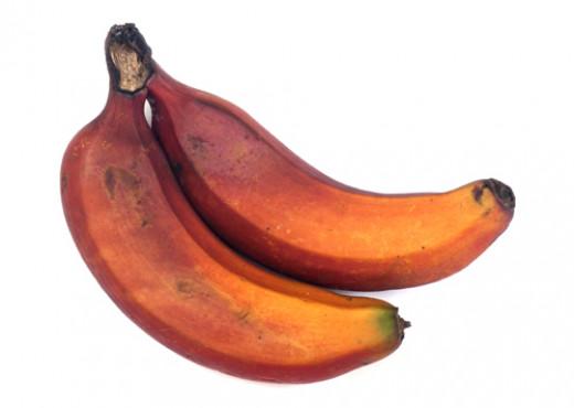 Red Caribe Bananas