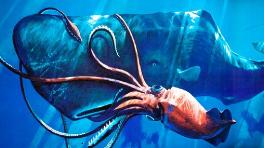 The Giant Squid in an epic battle against a sperm whale