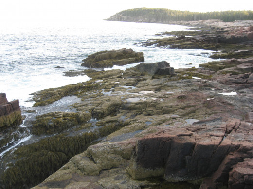 Acadia National Park: A piece of coast off of the Park loop road