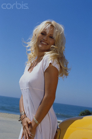 Pamela Anderson, Barb Wire, Scary Movie, and everyone's favorite: Bay Watch, which also starred, David Hasselhoff
