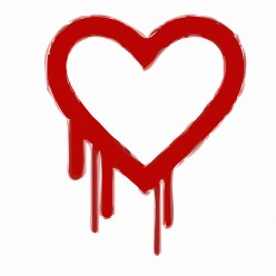 Widespread Heartbleed Bug Exposes Passwords
