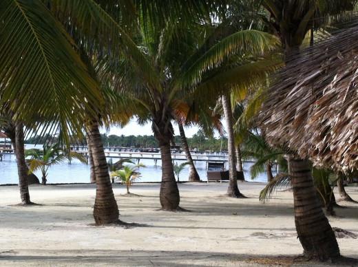 Great beach strolling