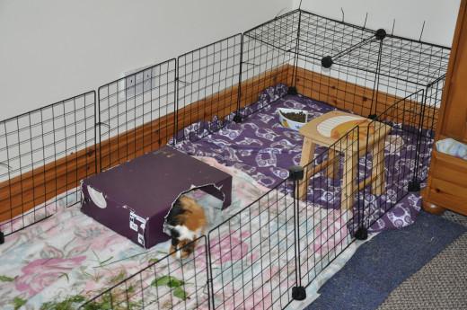 storage cube cage on carpet tiles, 6x2 tiles.
