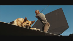 Movie Pets that Even I Would Like to Own