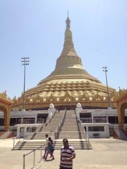 The pagoda sits among a natural set up.