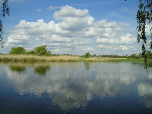 Zobnatica Lake near Bačka Topola, Serbia