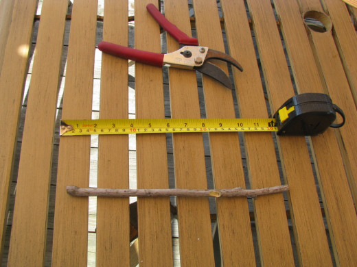 Large cutters and a measuring tape are the first tools necessary to wand making.