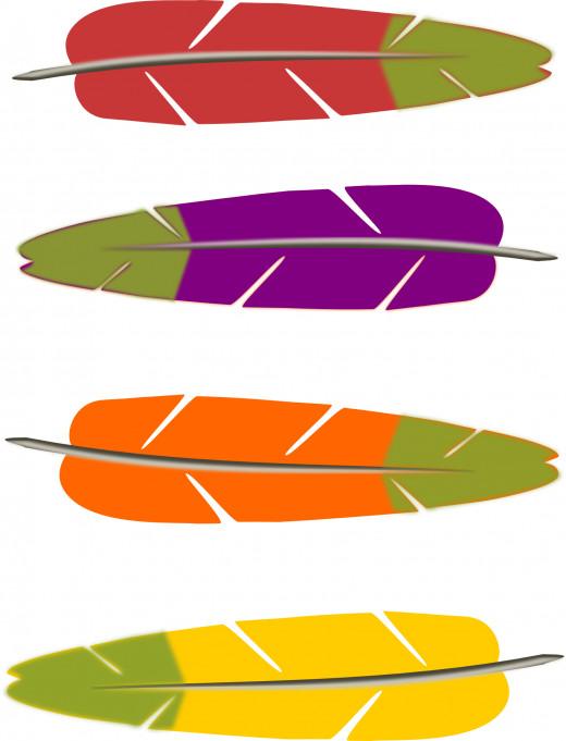 parrot feathers clipart, clip art, clip-art