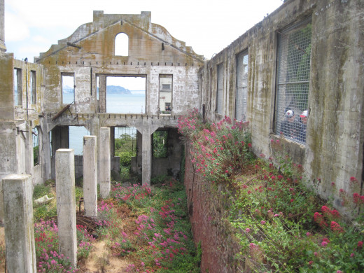 The picturesque ruins of what was once the Meeting Hall.