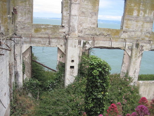 Through the ruin's windows out to the bay.