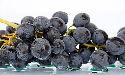 Chillin' grape