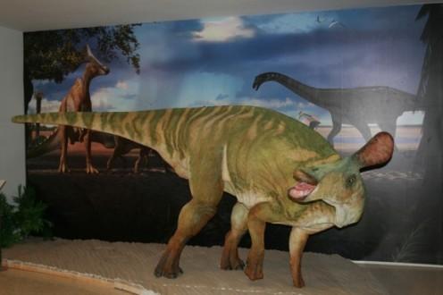 Life-sized model of Pararhabdodon at the Museu de la Conca Della in Isona.