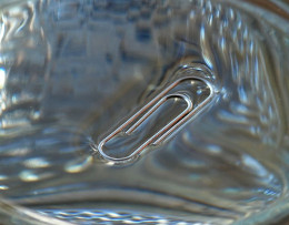 Surface tension preventing a paper clip from sinking.