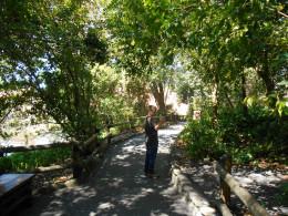 Tome Sawyer's Island in Magic Kingdom