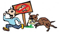 "Banning ""Exotic"" Pets Is Senseless"