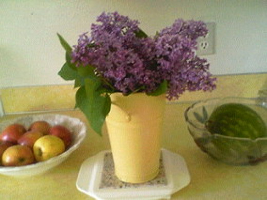 I love the fragrance of my Lilacs in my home
