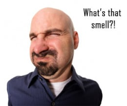 Does you home smell this bad?