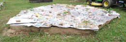 Cover bare soil with newspaper or cardboard.