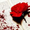 BloodRoseBeauty profile image