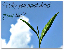 Drinking Green Tea Is Healthy