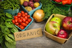 What Does Organic Mean?