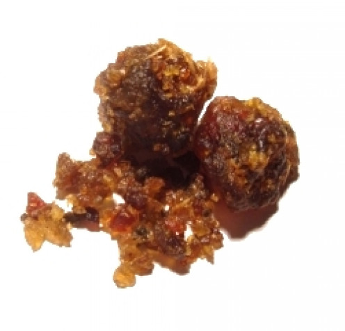 Guggul resin is extracted from the guggul plant and used for various medicinal purposes.