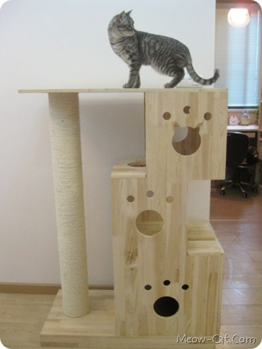 Designer diy cat tree ideas that make cats go meow hubpages for Do it yourself cat condo