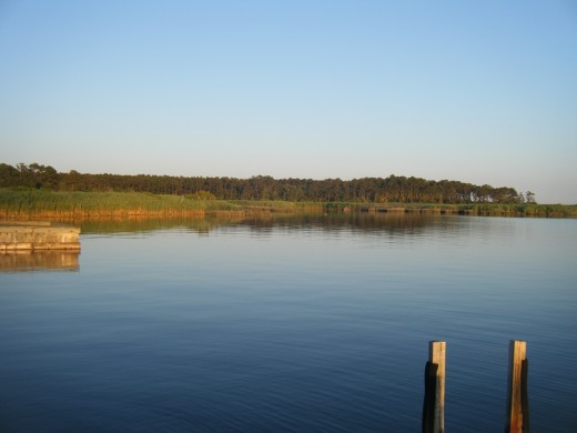 The marshes and inlets of southwestern Virginia are a calm place to enjoy nature.