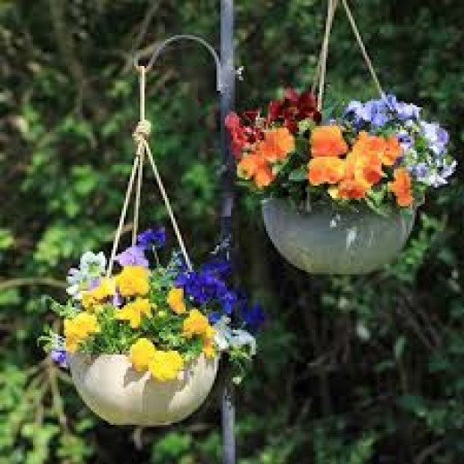 Hanging baskets make a nice colorful addition to any garden.